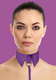 Classic Collar with Leash - Purple